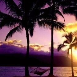 Heiraten auf der Trauminsel Hawaii