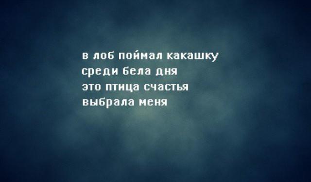 http://www.libo.ru/up/10375/160824014705.jpg