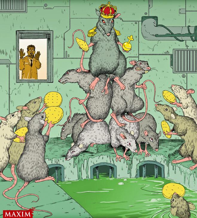 10 самых беспощадных экспериментов над крысами
