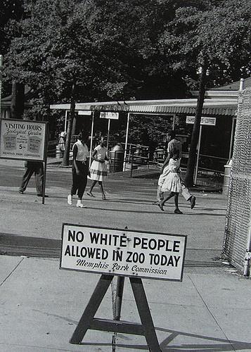 Белым сегодня вход в зоопарк запрещен