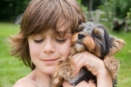 15 вещей которым люди могут поучиться у собак