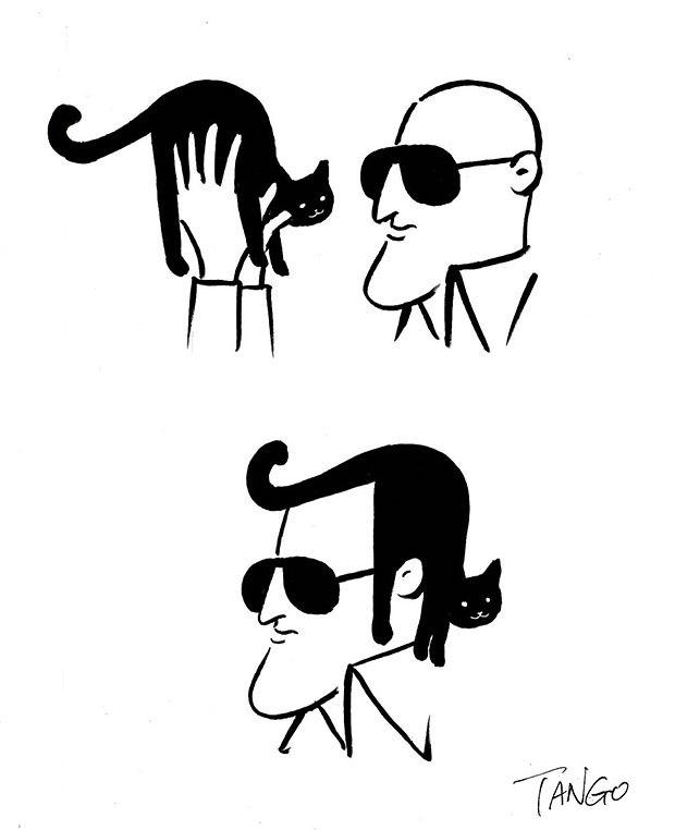 Нестандартное применение кота