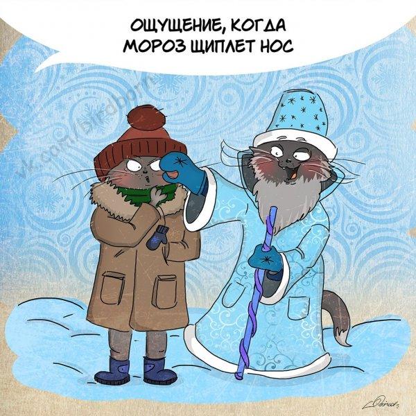 10 причин любить зиму