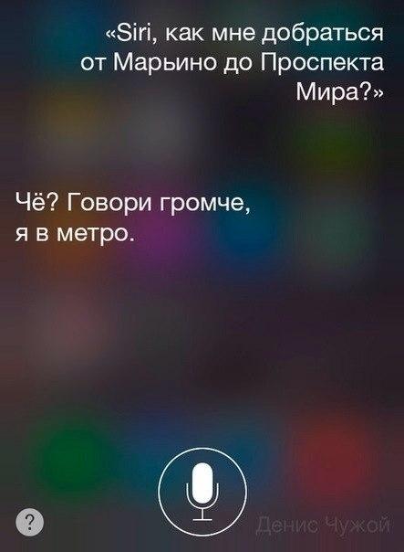 Разговоры с Siri