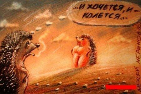 Старые сказки в новой вариации от Алексея Меринова