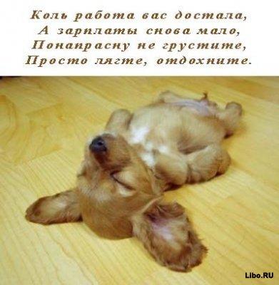 http://www.libo.ru/uploads/posts/2009-03/1237799889_1421.jpg