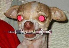 Защита от нападения собак