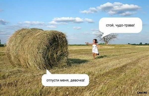 Напишите ваши варианты диалога :)