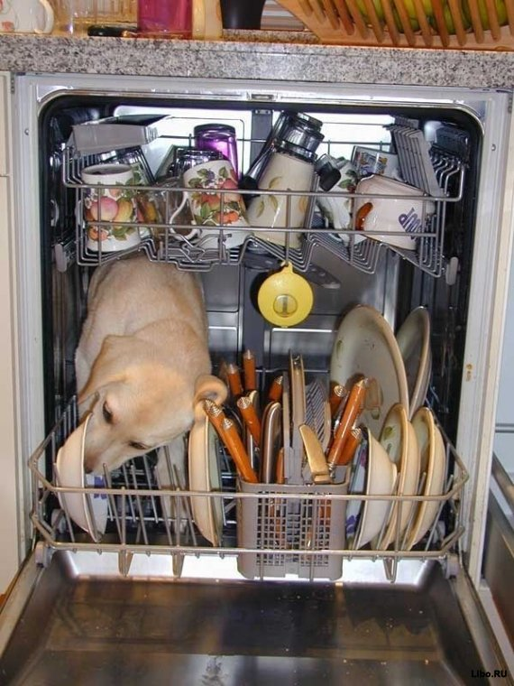 Посудомоечная машина нового поколения