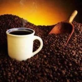 ...доза кофеина - 192 мг на крысиный килограмм.  Для человека эта цифра...