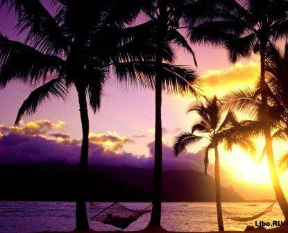 Десятка фактов о Гавайях