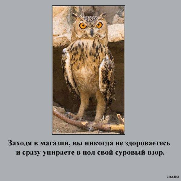 Вы русский турист, если...