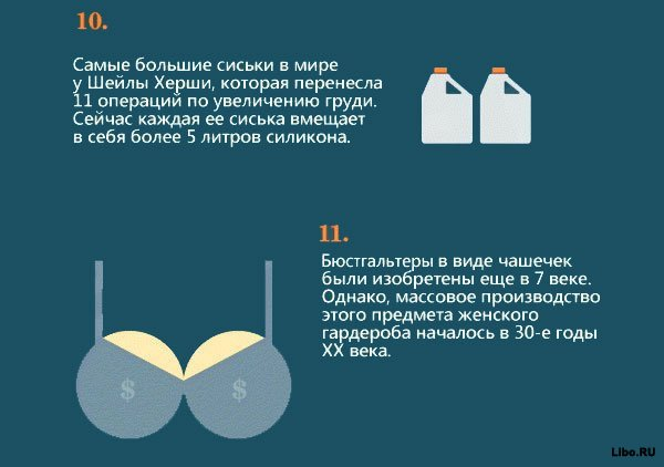 Факты о женской груди