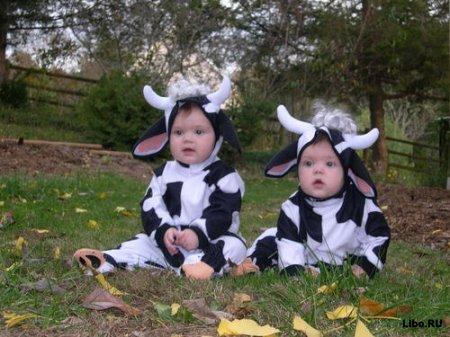 Факты о близнецах