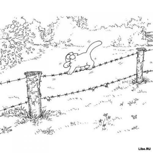 Саймон Тофилд: Кот Саймона сам по себе