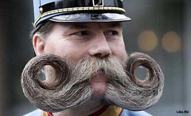 10 фактов про бороды
