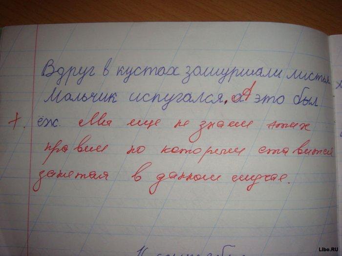 Картинки :)  Выпуск № 1