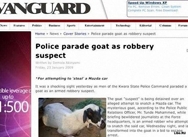 Животные - уголовники