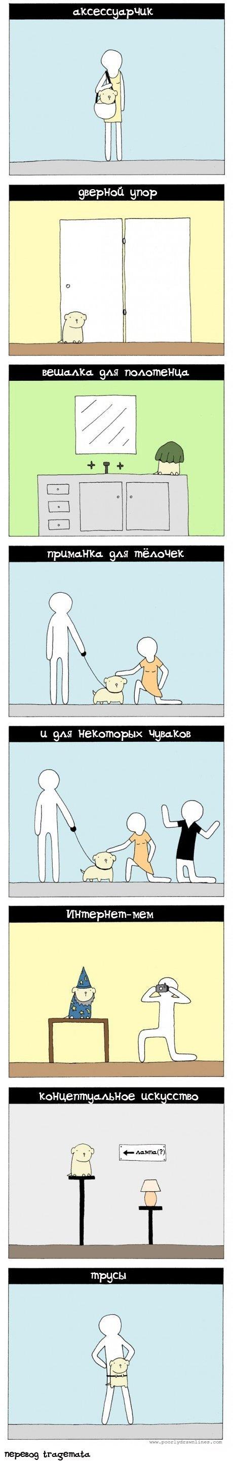Способы применения маленьких собачек