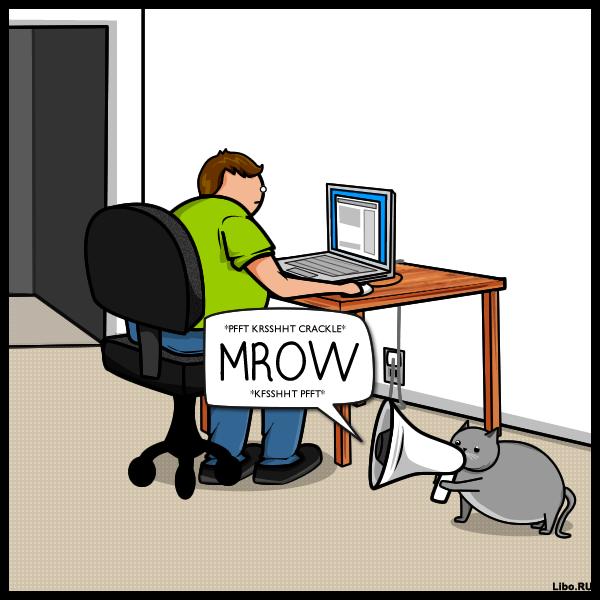 Кот VS интернет