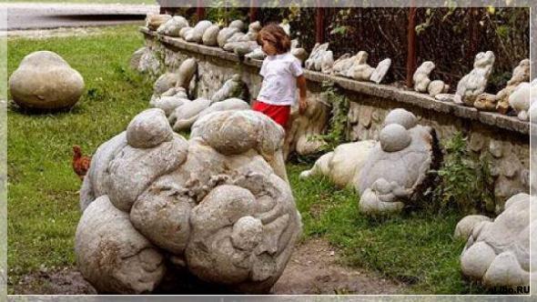 Трованты - живые камни