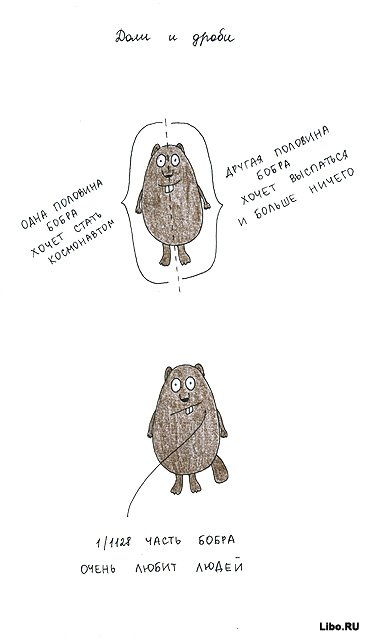Объяснение понятий на бобрах