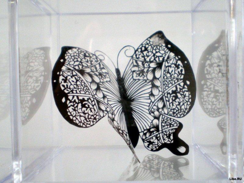 Бумажные кружева Хины Аоямы