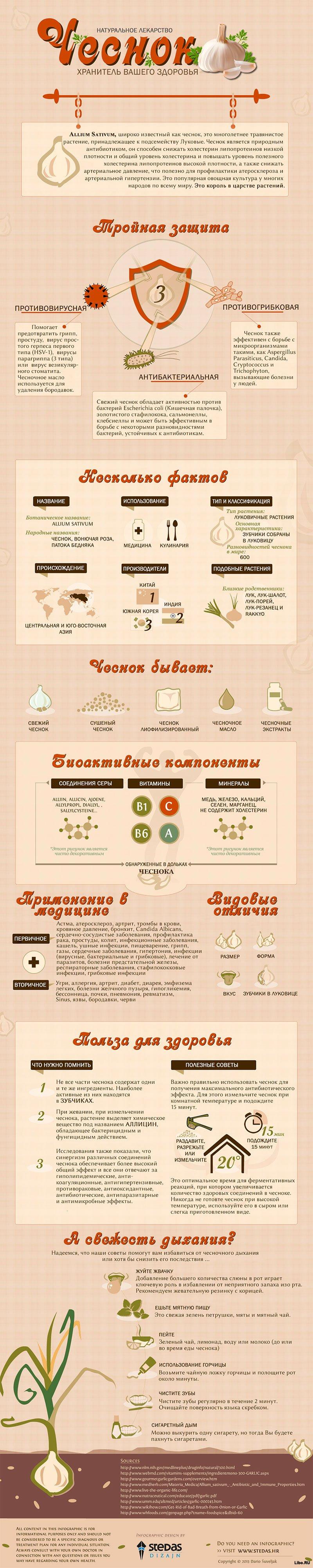 Интересные факты о чесноке